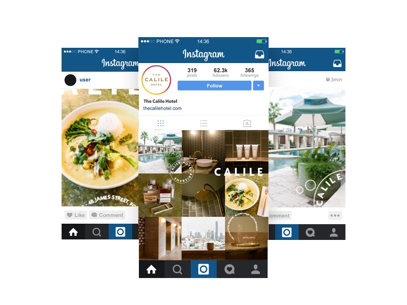 The Calile social instagram social media marketing